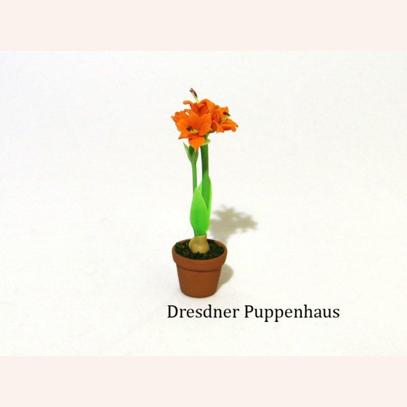 Amaraylis im blumentopf im dresdner puppenhaus 5 90 for Blumentopf tiere